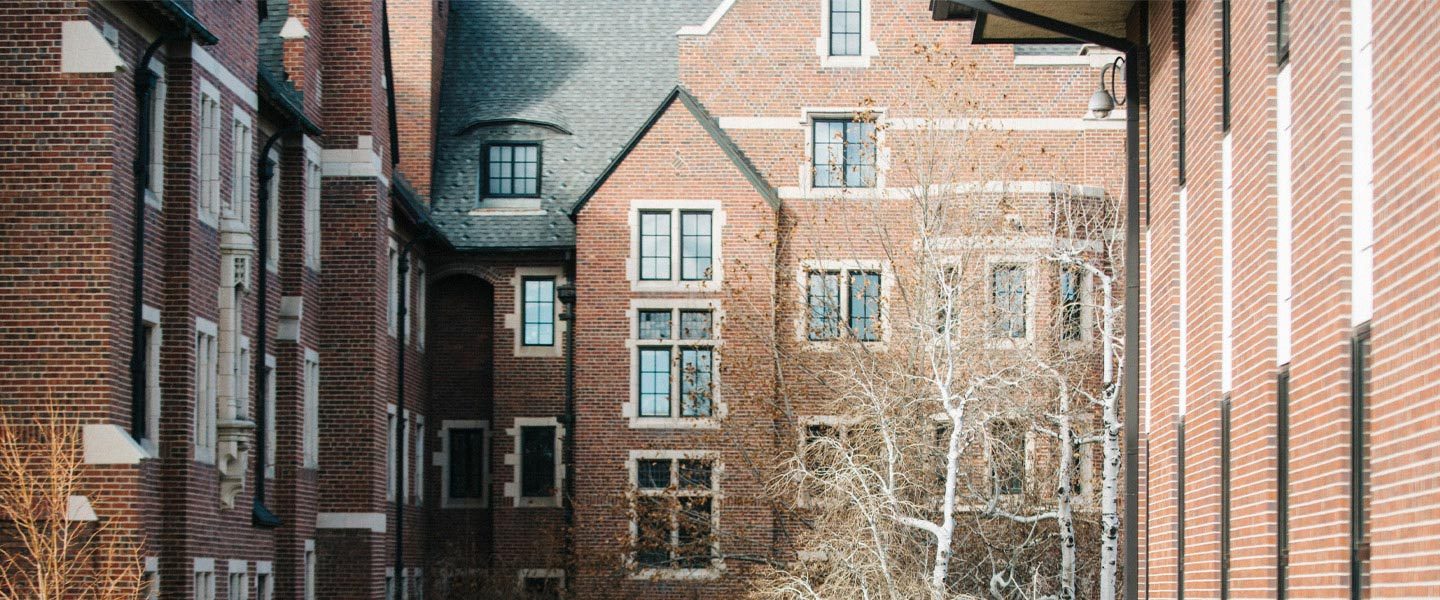 view of Carroll Hall windows and brick walls