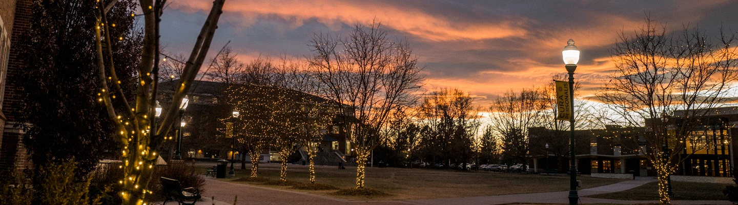 sunset with festive lights in trees