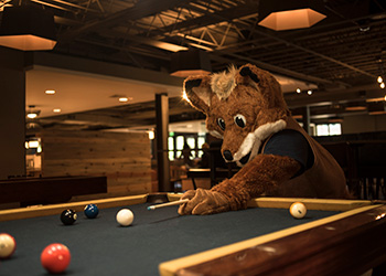 mascot Regi plays pool in the Student Center
