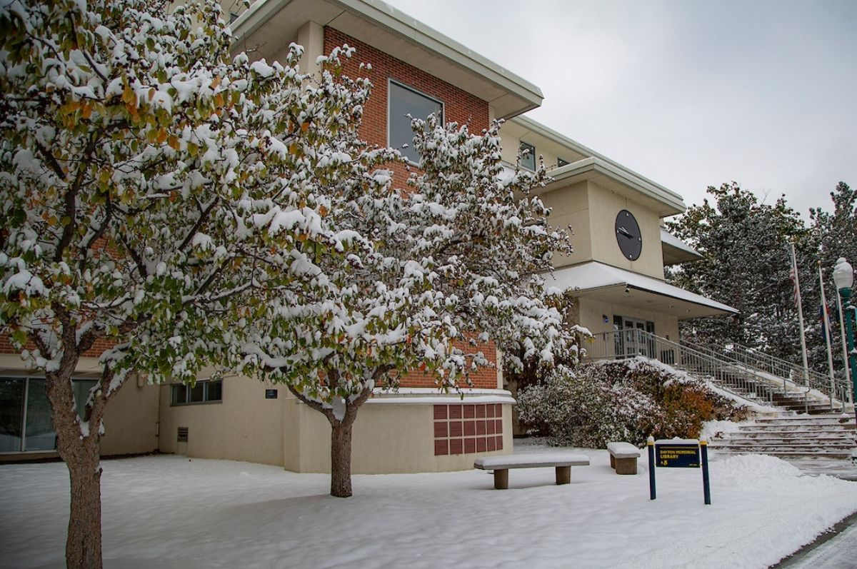 snowy library