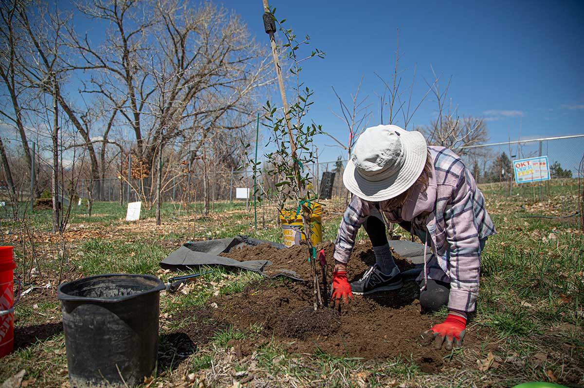 Sonia John works in the soil